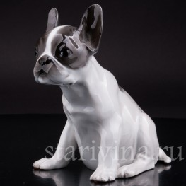 Фарфоровая статуэтка собаки Щенок французского бульдога Rosenthal, Германия.